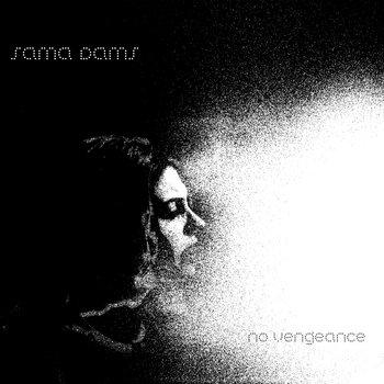 No Vengeance cover art