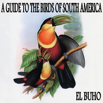 A Guide to the Birds of South America EP cover art