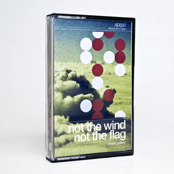 AD037 Not the Wind, Not the Flag 'Music Gallery' cover art