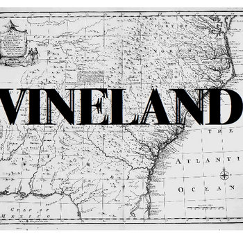 Vineland cover art