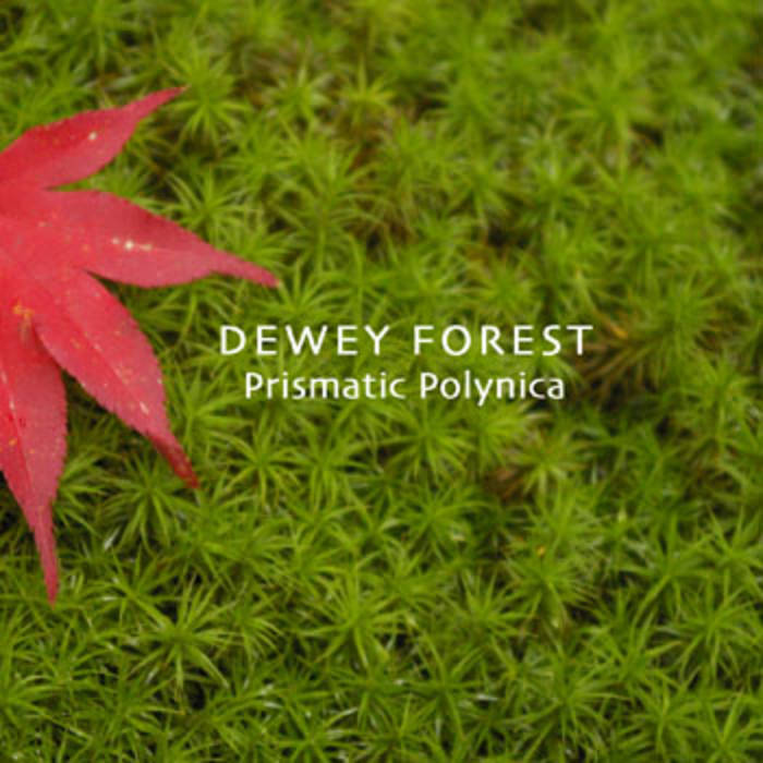 DEWEY FOREST cover art