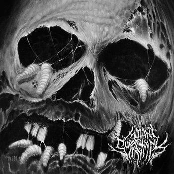 """Rotting Season 7"""" EP cover art"""