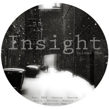Insight Vol. 1 cover art