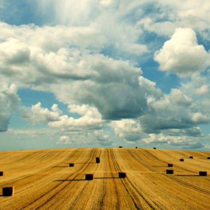 Rootscontrolla - Ukrainian Agriculture Dub cover art
