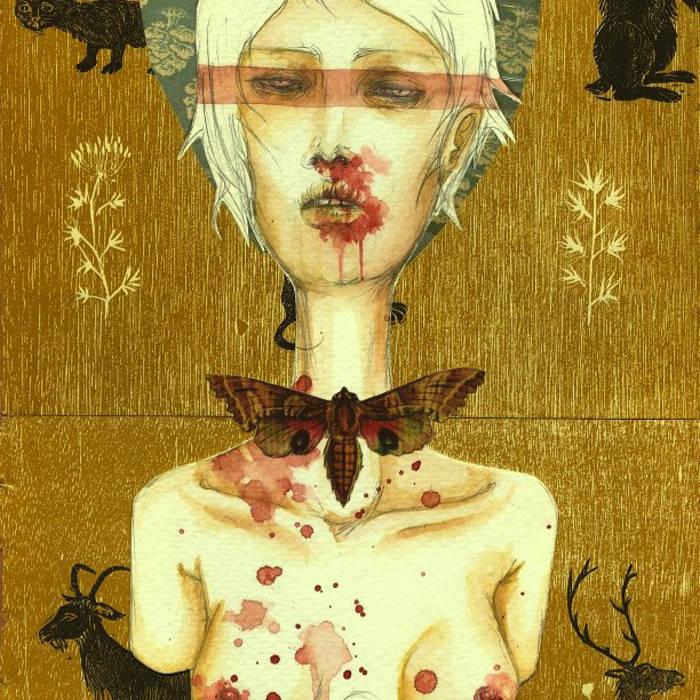 Lucid Interval cover art