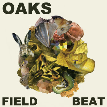 Field Beat cover art