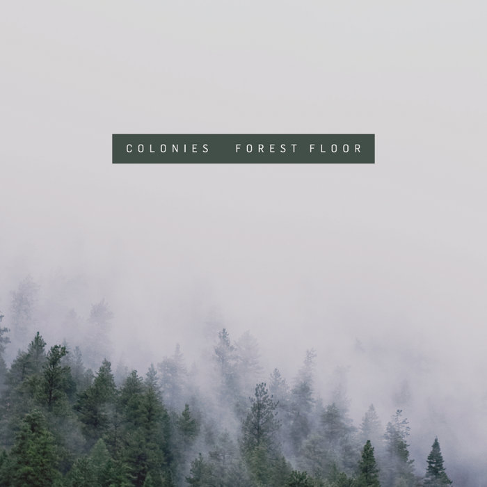 Forest Floor cover art
