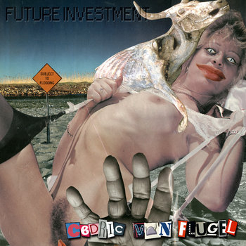 Future Investment cover art