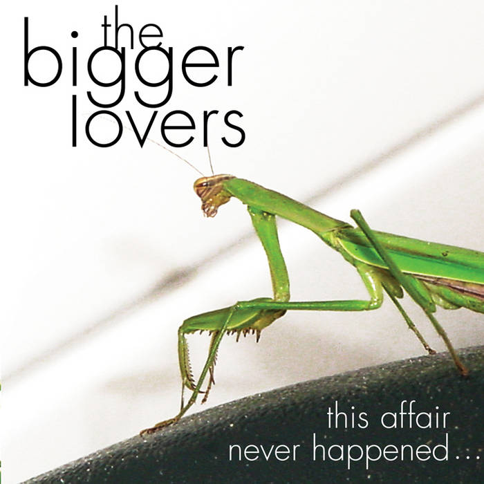 This Affair Never Happened... And Here Are Eleven Songs About It cover art