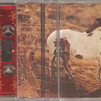 split (with Bedroom Bear) cover art