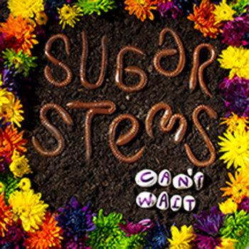 Sugar Stems - Can't Wait cover art