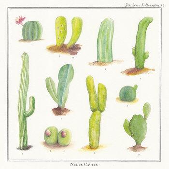 Nudus Cactus cover art