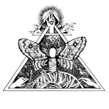 Proboscis cover art