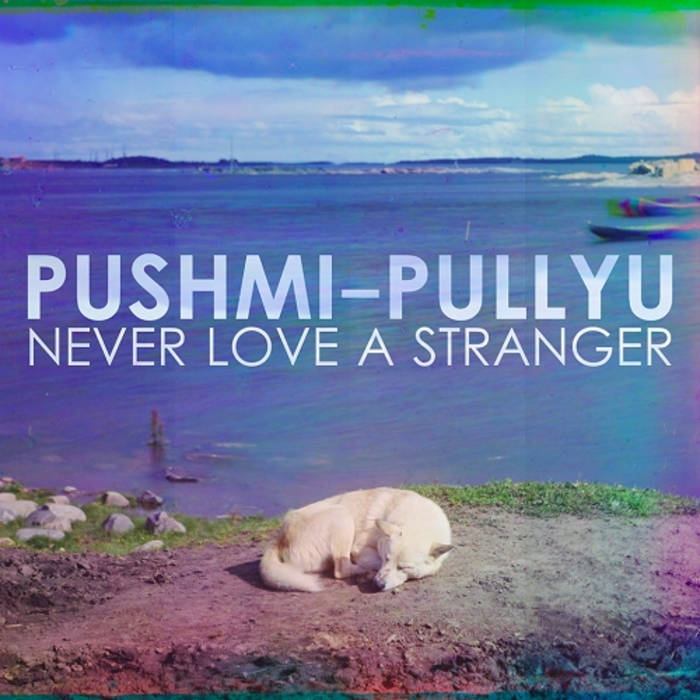 Never Love A Stranger cover art