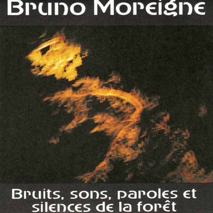 Bruits, sons, paroles et silences de la forêt cover art