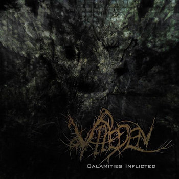 Calamities Inflicted cover art