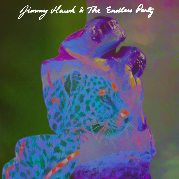 Jimmy Hawk & The Endless Party LP cover art