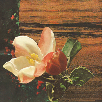 Crystal Anniversary split cover art