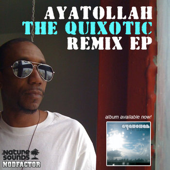 Nodfactor & Nature Sounds Present: The Quixotic Remix EP cover art