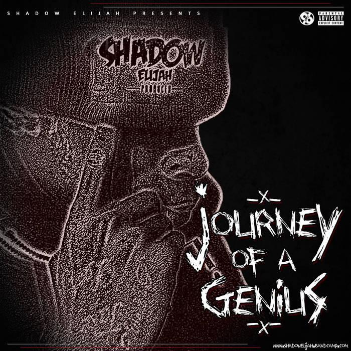Journey Of A Genius cover art