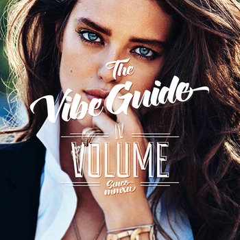 THE VIBE GUIDE Vol. 4 cover art