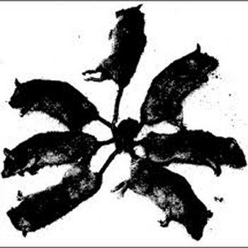 Rat King cover art