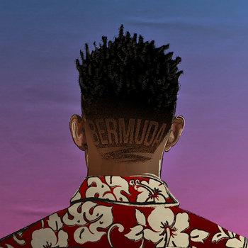 Bermuda cover art