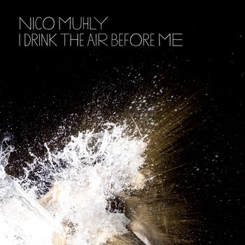 I Drink The Air Before Me cover art