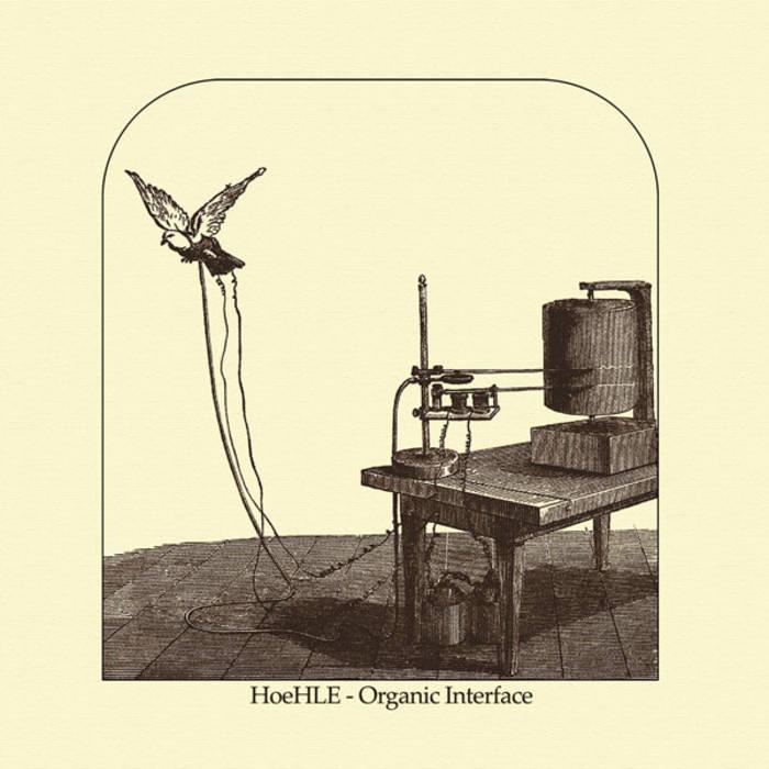 Organic Interface cover art