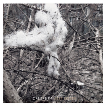 Cold Ground cover art