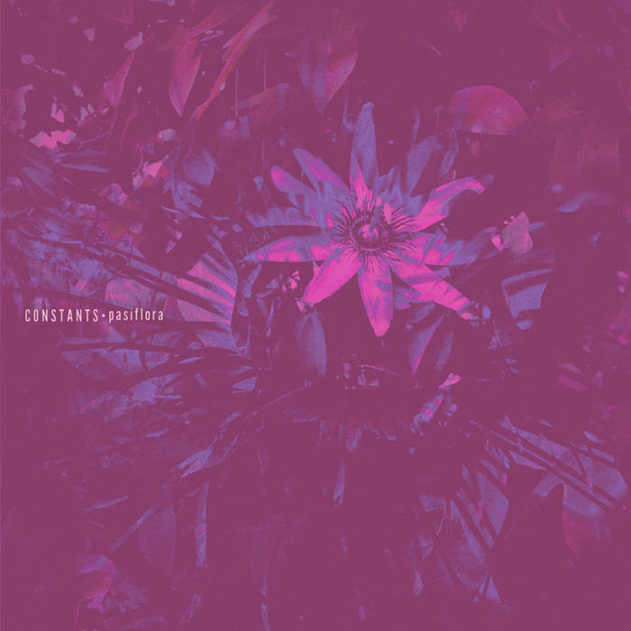 Pasiflora cover art