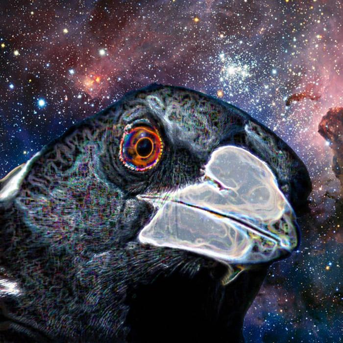 SPACE SWOOP cover art
