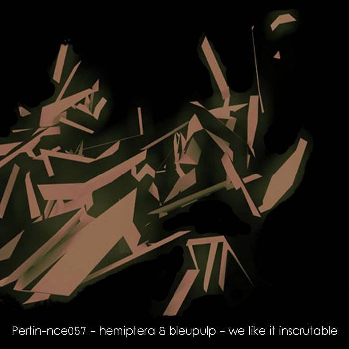 [pertin-nce_057] hemiptera & bleupulp - we like it inscrutable cover art