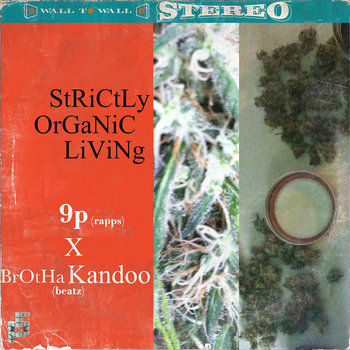 StRiCtLy OrGaNiC LiViNg cover art