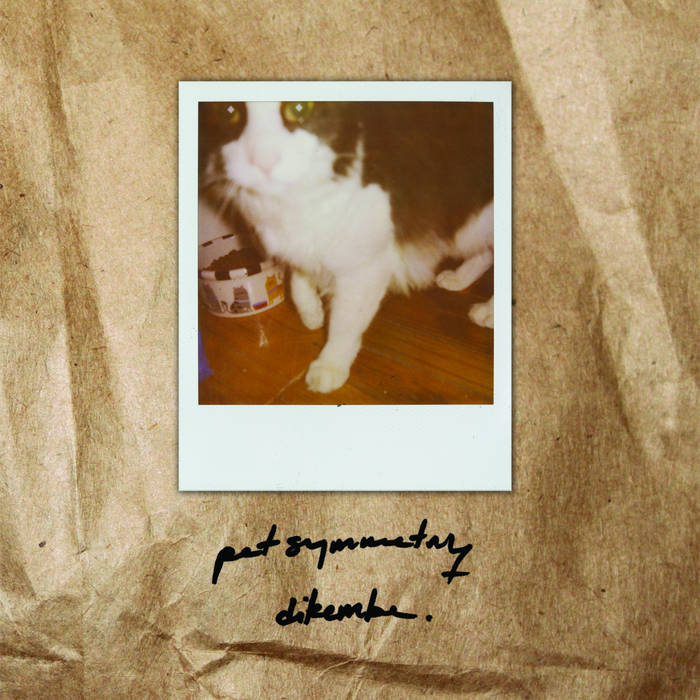Pet Symmetry/Dikembe cover art