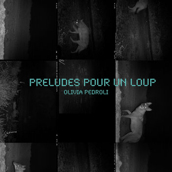PRELUDES POUR UN LOUP (Preludes for a wolf) cover art