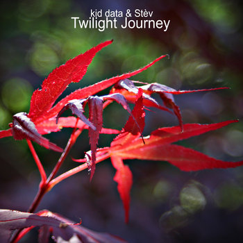 Twilight Journey cover art