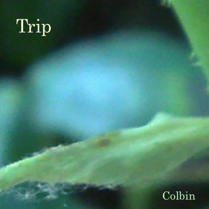 Trip cover art