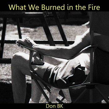 What We Burned in the Fire cover art