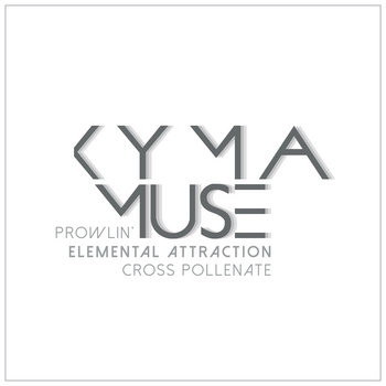 Elemental Attraction cover art