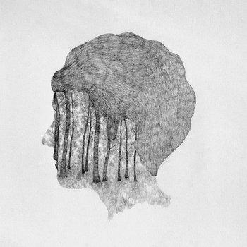Inner Fields cover art