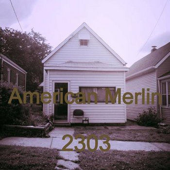 WBR003: American Merlin - 2303 cover art