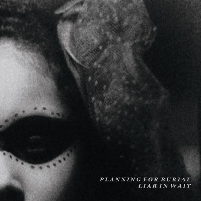 Liar in Wait/Planning for Burial Split cover art