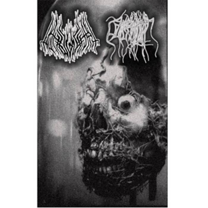 Pathogenesis / Parasitic Twin Split cover art