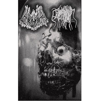 Pathogenesis / Parasitic Twin Split cover art
