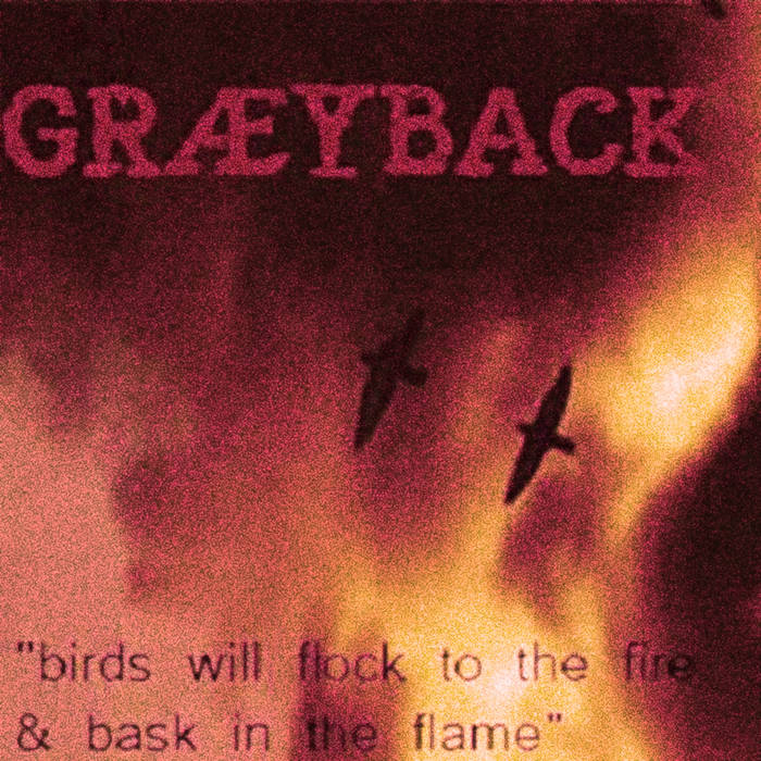Birds Will Flock To The Fire And Bask In The Flame cover art