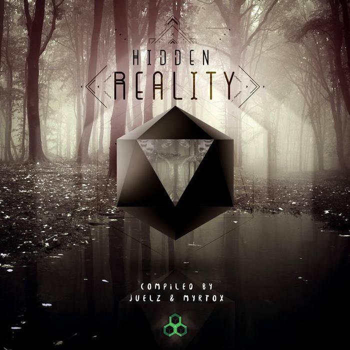 VA - Hidden Reality cover art