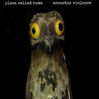 Acoustic Violence cover art