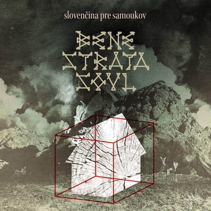 Slovenčina pre samoukov cover art