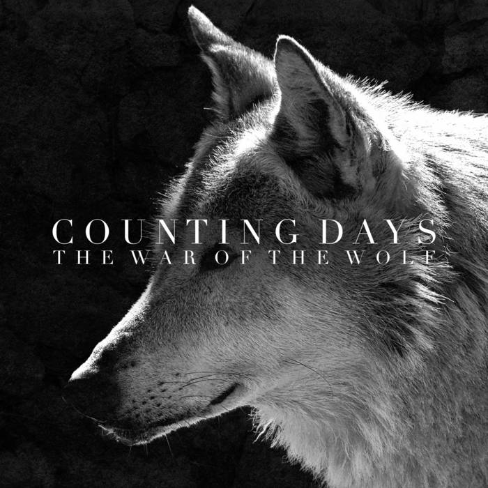Counting Days - (sic) Slipknot Cover cover art